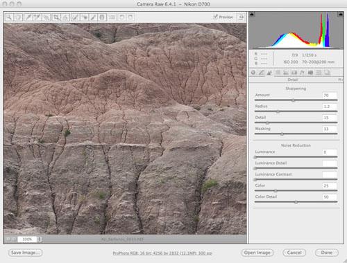 Adobe Camera Raw - Details: sharpening applied