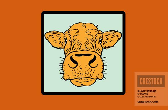 Cow Card Wallpaper