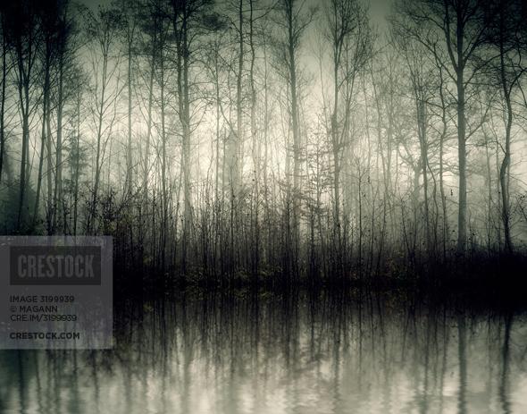 Crestock-3199939-590px